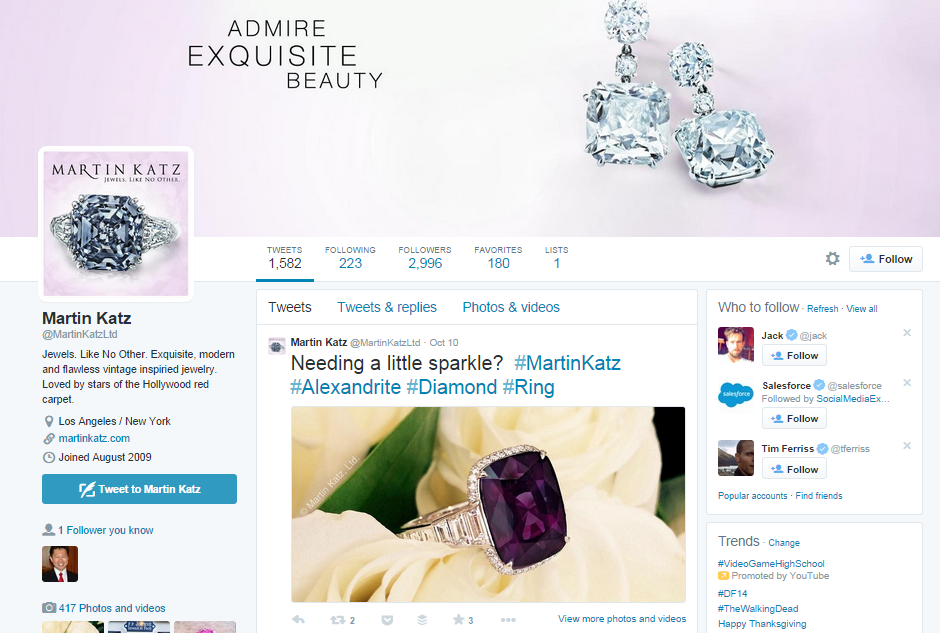 Great Twitter profile example