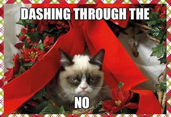 dashing_through_no